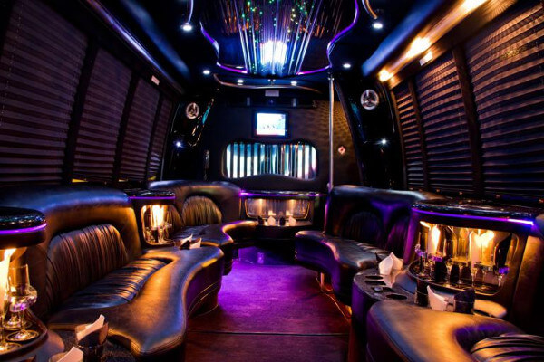 15 Person Party Bus Rental St Petersburg