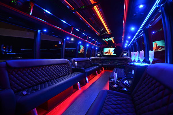40 Person Party Bus Rental St Petersburg