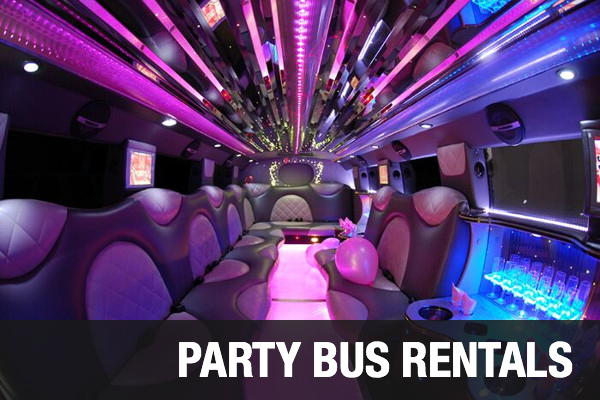 Party Bus Rentals St Petersburg